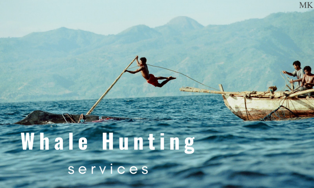 Whale Hunting Services